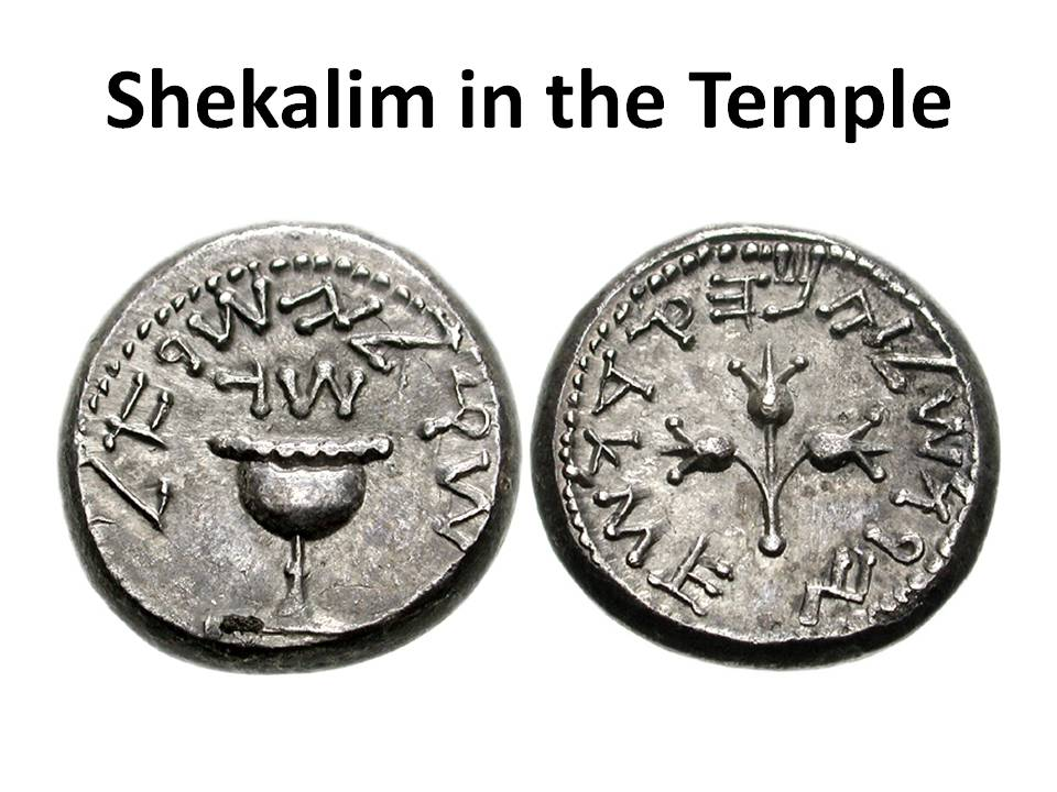 Shekalim in the Temple