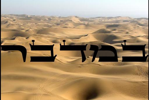 Torah Portion Bamidbar  Number 1:1-4:20 (2010-11)