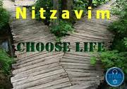 Torah Portion Nitzavim-Veyelech Complete