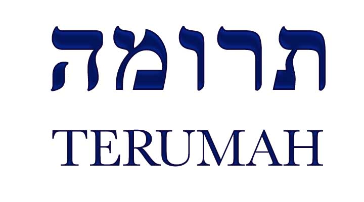 terumah-blue