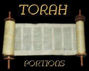 Torah Portion Ki-Tetsei Complete